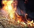 Сено в огне