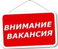 МО Балезинское требуется специалист. Наименование должност
